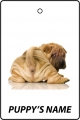 Personalised Chinese Shar Pei Puppy