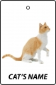 Personalised Cat's Name Ginger And White Cat