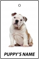 Personalised British Bulldog Puppy