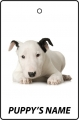 Personalised Bull Terrier Puppy
