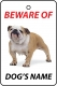 Personalised Dog's Name British Bulldog