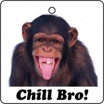 Chimp Chill Bro