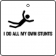 I Do All My Own Stunts