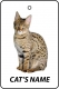 Personalised Cat's Name Savannah