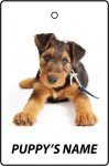 Personalised Airedale Terrier Puppy