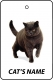 Personalised Cat's Name British Shorthair