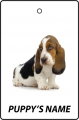 Personalised Basset Hound Puppy