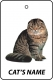 Personalised Cat's Name Scottish Fold