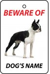 Personalised Dog's Name Boston Terrier
