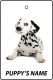 Personalised Dalmation Puppy